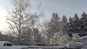 snow in Edmonton- Alberta