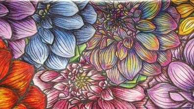 Blossoming II