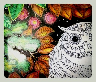 glasercrafts -owl, secret garden book