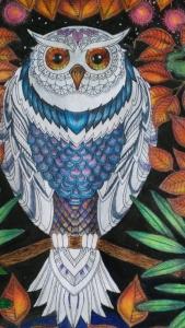 still colour the feathers-Secret Garden